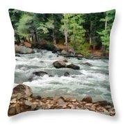 Fast Flowing Lidder Throw Pillow