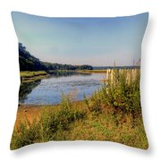 Fast Tides Throw Pillow