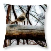 Fat Sparrow Fat Fence Throw Pillow