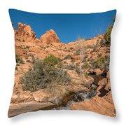 Faux Falls Trail Throw Pillow