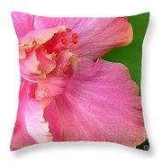 Favorite Flower 3 Throw Pillow