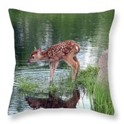 Fawn At The Water Hole Throw Pillow