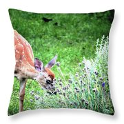 Fawn Visits Flowers Throw Pillow