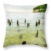 Fayette State Park Shoreline Throw Pillow