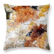 Fear Of The Unknown Close-up Throw Pillow