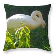 Feasting On Vegetation Throw Pillow