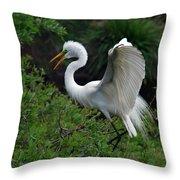 Feather 8-8 Throw Pillow