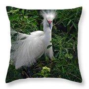 Feather 8-9 Throw Pillow