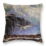 Feather And Foam Throw Pillow