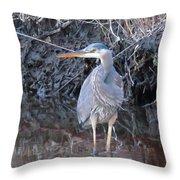 Feather Boa Throw Pillow