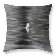 Feather Dance Throw Pillow