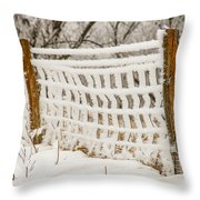 Feather Dusted Throw Pillow