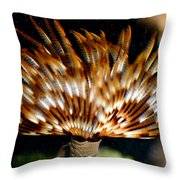 Feather Duster Throw Pillow