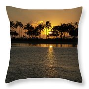 Feather Dusters Throw Pillow
