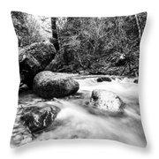 Feather Falls Stream Throw Pillow