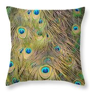 Feather Finesse Throw Pillow