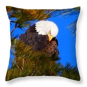 Feather Fluff Throw Pillow