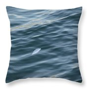 Feather From Heaven Throw Pillow