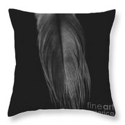 Feather In Black And White Throw Pillow
