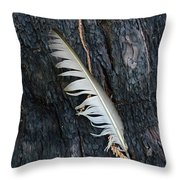 Feather In Burnt Tree Throw Pillow