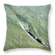 Feather On Beach Throw Pillow
