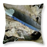 Feather On The Forest Floor Throw Pillow