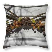 Feather Swag Throw Pillow
