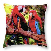 Feathered Duet Throw Pillow