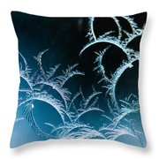 Feathered Frost Throw Pillow