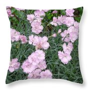 Feathered Pink Throw Pillow