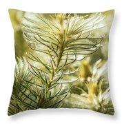 Featherheads Throw Pillow