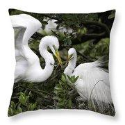 Feathering Their Nest Throw Pillow
