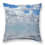 Featherly Throw Pillow
