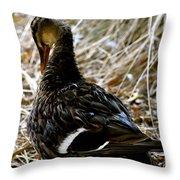 Feathers 2 Throw Pillow