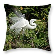 Beautiful Feathers And Foliage Throw Pillow