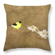 Feathers And Petals I Throw Pillow