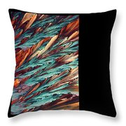 Feathers Of Crystal 2 Throw Pillow