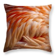 Feathers Of Pink Throw Pillow