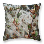 Feathery Styles Of Mountain Mahogany  Throw Pillow
