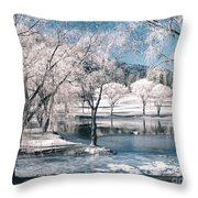 February 22 2010 Throw Pillow