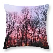 February At Twilight Throw Pillow