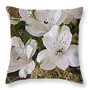 February Flowers Throw Pillow