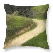 February Green Throw Pillow