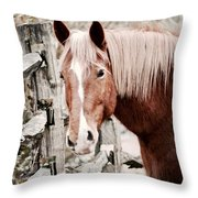 February Horse Portrait Throw Pillow