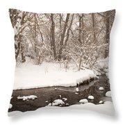 February Snow Throw Pillow