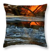February Thaw In New England Throw Pillow