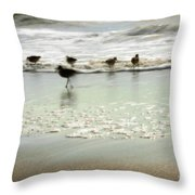 Plundering Plover Series 2 Throw Pillow