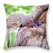 Feeding Babies In The Nest Throw Pillow