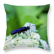 Feeding Insect Throw Pillow