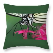 Feeding Rice Paper Throw Pillow